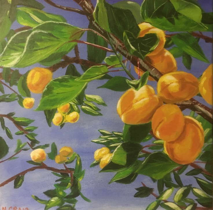 apricot painting complete